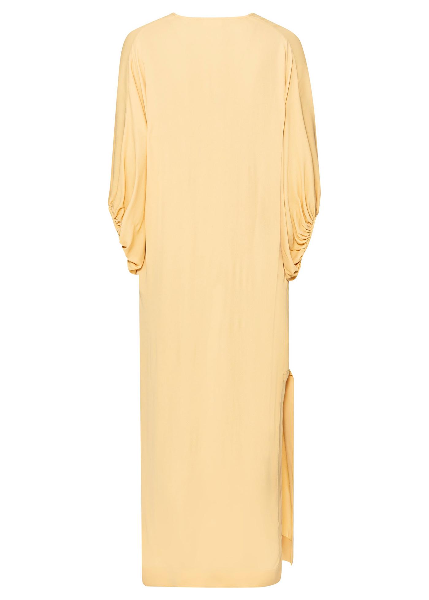Dress DYPSIS image number 1