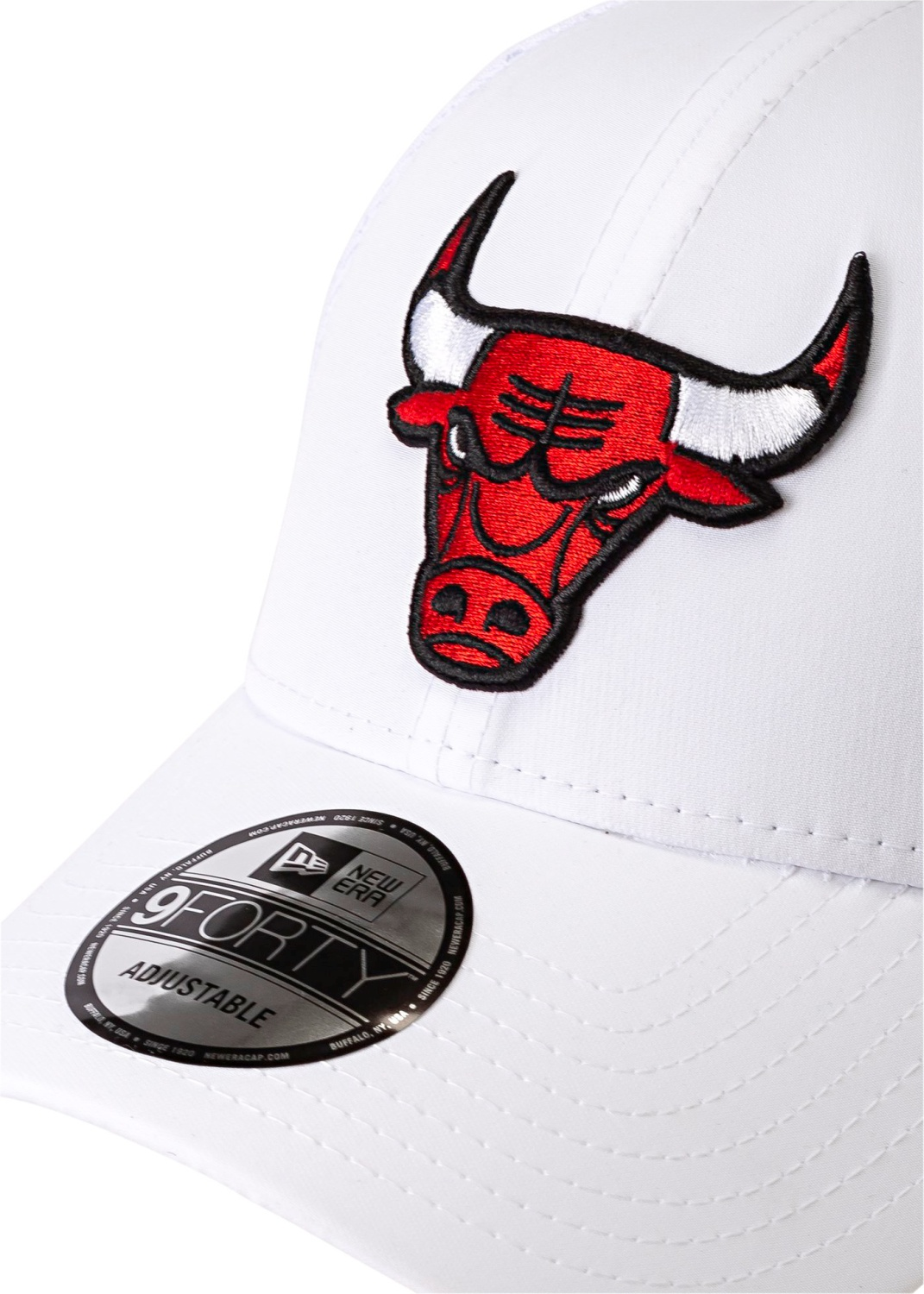 TEAM ARCH 9FORTY CHICAGO BULLS image number 1
