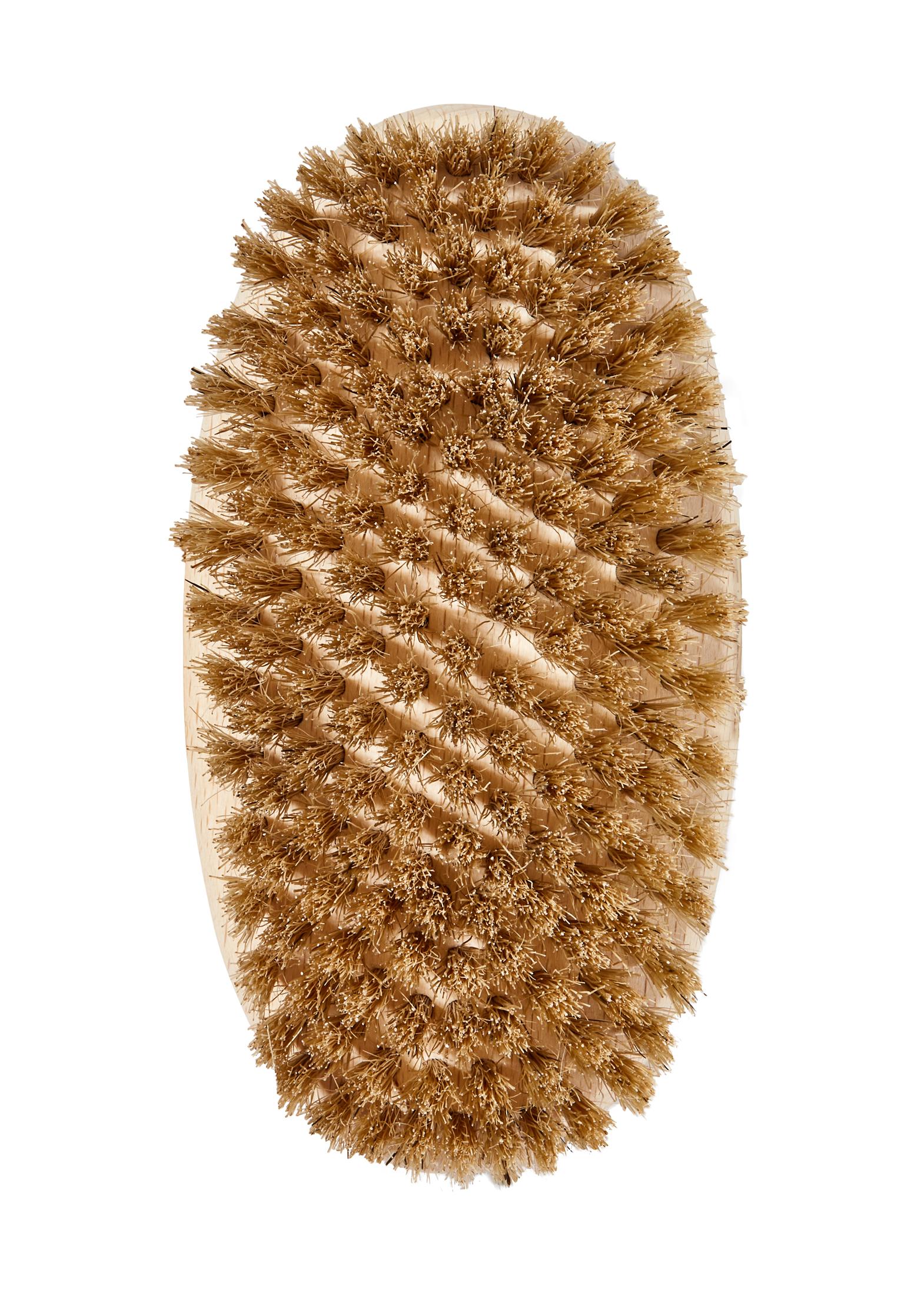 Body Brush- soft image number 2